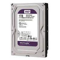HDD WD 3.5 1TB WD10PURZ Purple Western Digital-WD10PURZ